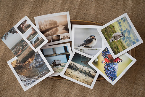 Photographic Greeting Cards