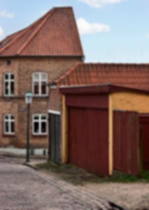 Viborg uds_N8R0481.jpg