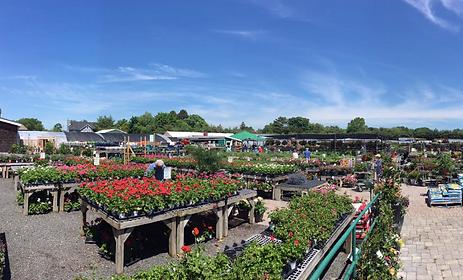 Barlow's Garden Center