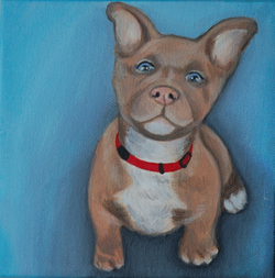blue eyed puppy painting.png