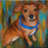 custom pet portraits,chichuahua dachshund mix painting, custom pet painting, cute dog, pet portrait painting, cool gift ideas, bold bright painting of dog, dachshund face, pet portraits from photos
