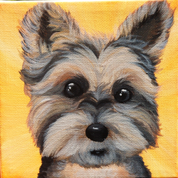 cute little yorkie painting on canvas.png