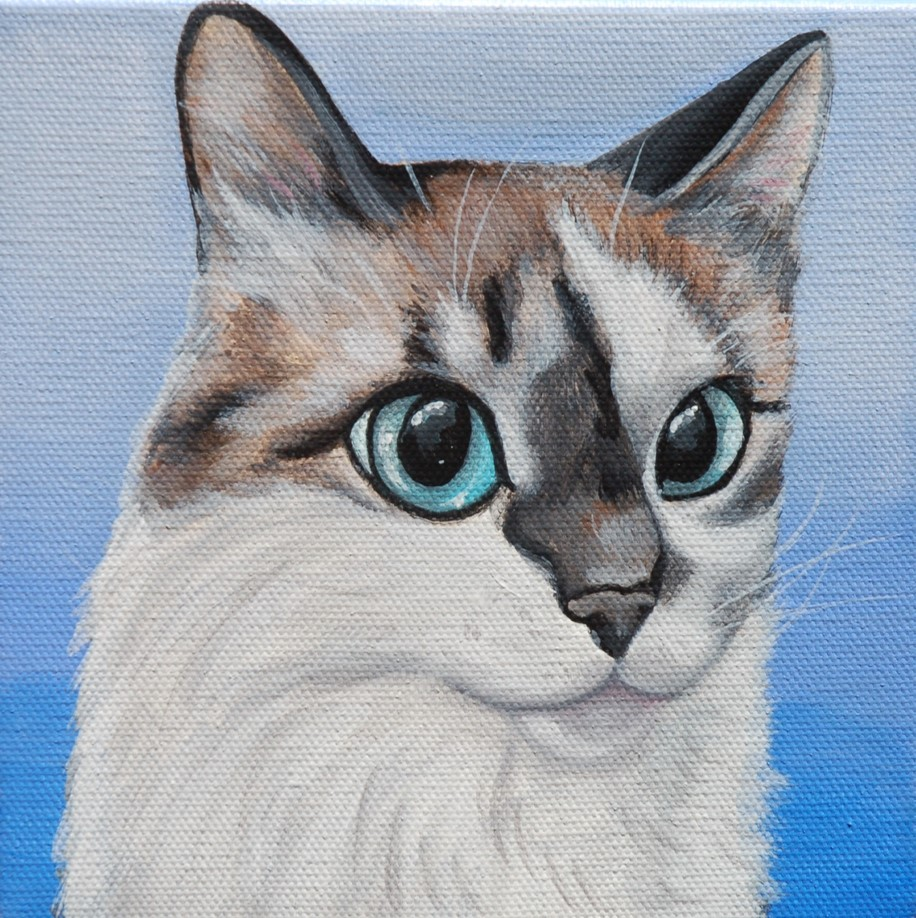 beautiful cat painting on canvas blue eyes.jpg