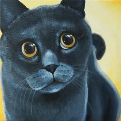 BLUE CAT PORTRAIT PAINTING.png