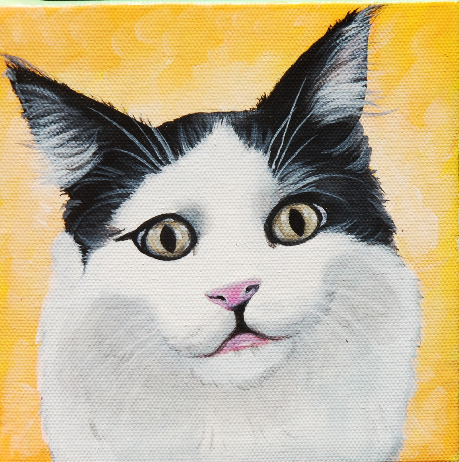 cute kitty cat painting on canvas