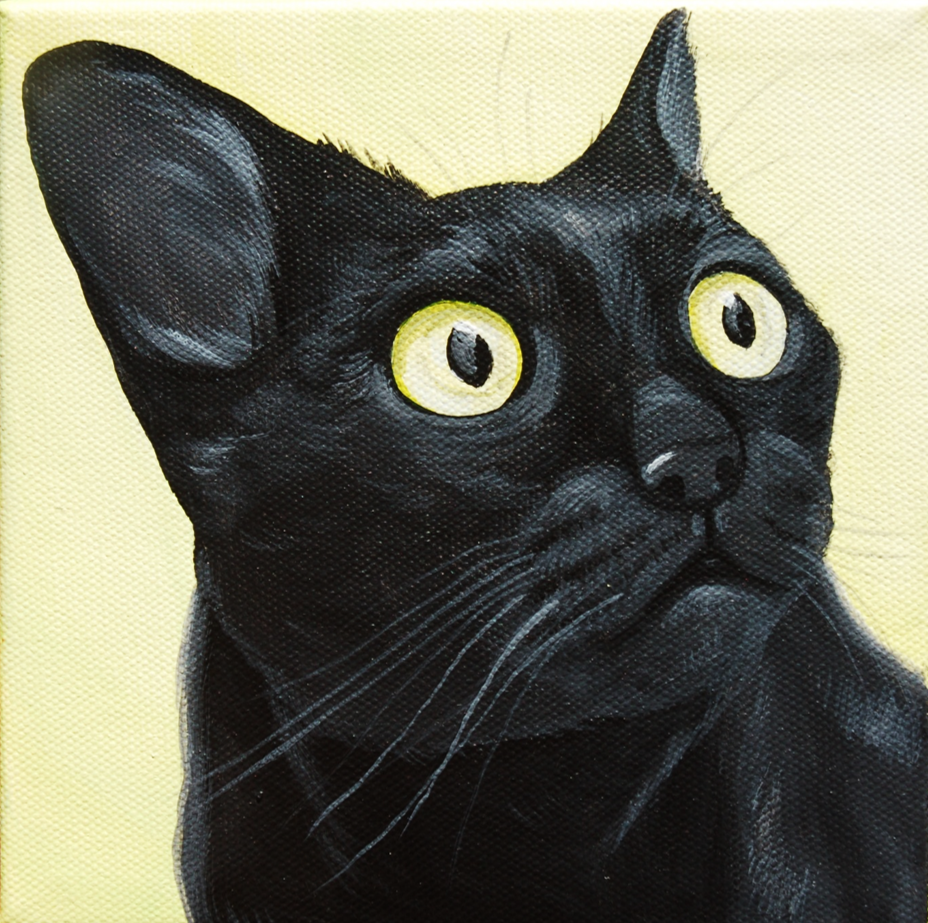 black cat wide eyes painting