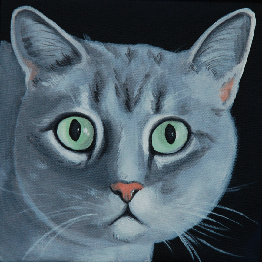 gray cat beautiful eyes painting