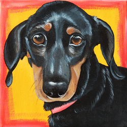 Cute black doxie dachshund painting colorful.png
