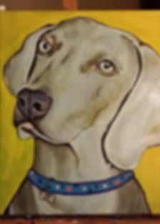 custom pet portraits, beautiful weimaraner painting custom painting, custom pet painting, custom pet portrait, off the wall paintings, custom springer spaniel painting, bright fun pet painting, bold colors painting, gift ideas, cool dog painting