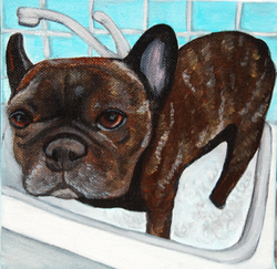 French Bulldog in kitchen sink painting.png