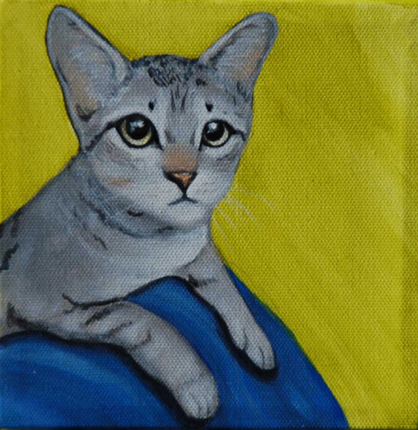 grey kitten painting
