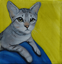 grey kitten painting