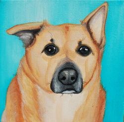 cute dog portrait one ear up.png