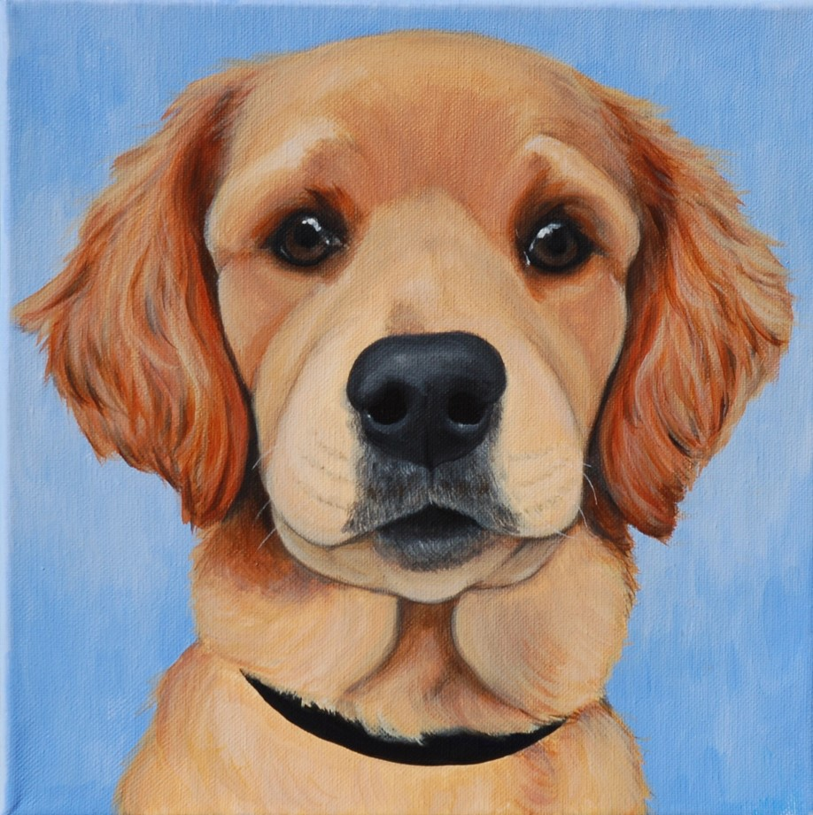 Custom Pet Portrait Painting