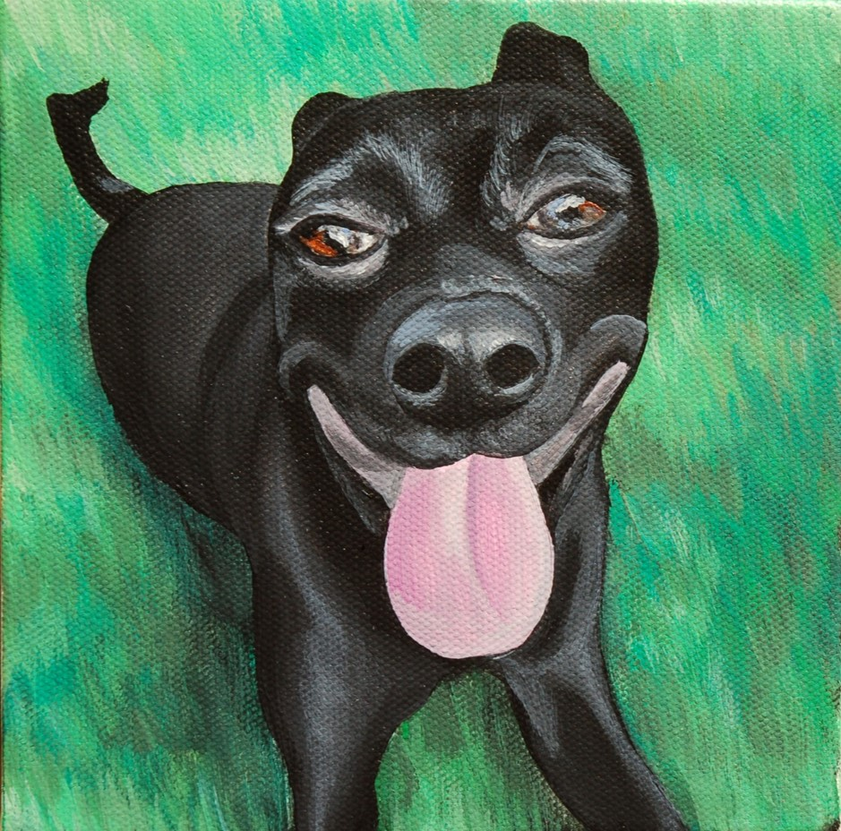black dog smiling in grass.jpg