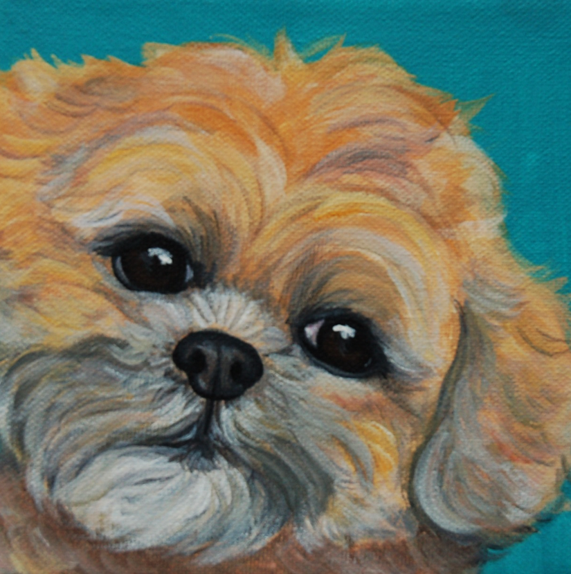 super cute furry puppy painting.png