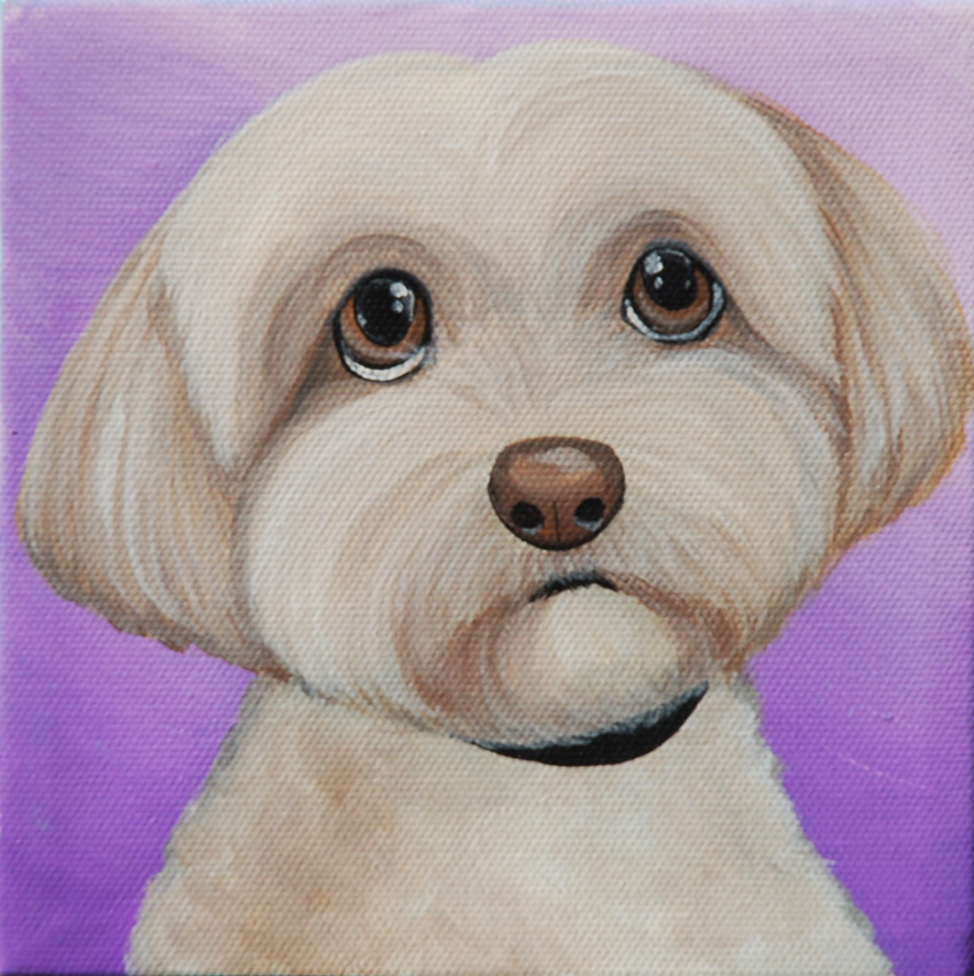 shih tzu painting purple.png