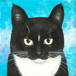tuxedo cat cuteness apinting.png