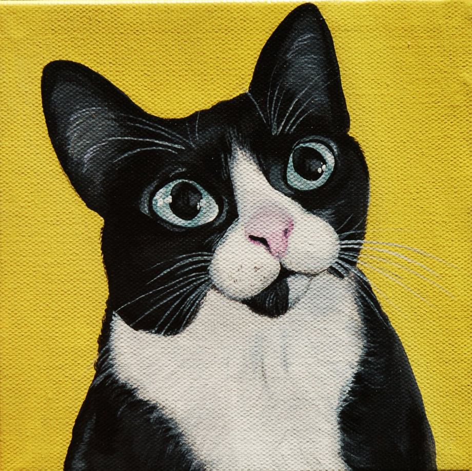 tuxedo cat painting yellow background