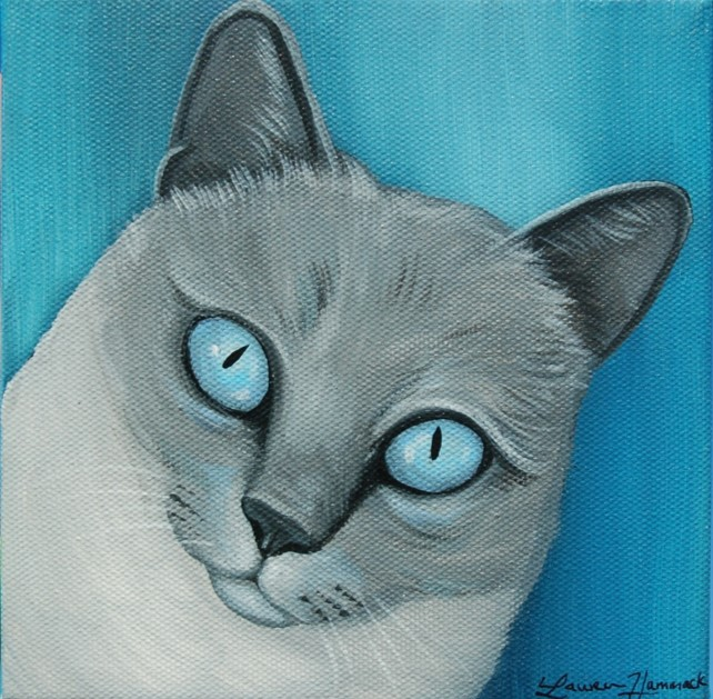 grey cat blue eyes portrait painting