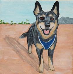 adorable dog painting.jpg