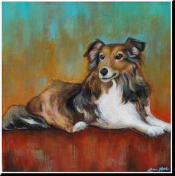 custom pet painting sheltie abstract