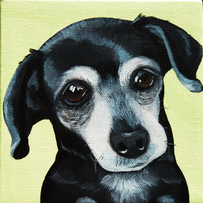 little black dog painting on canvas.png
