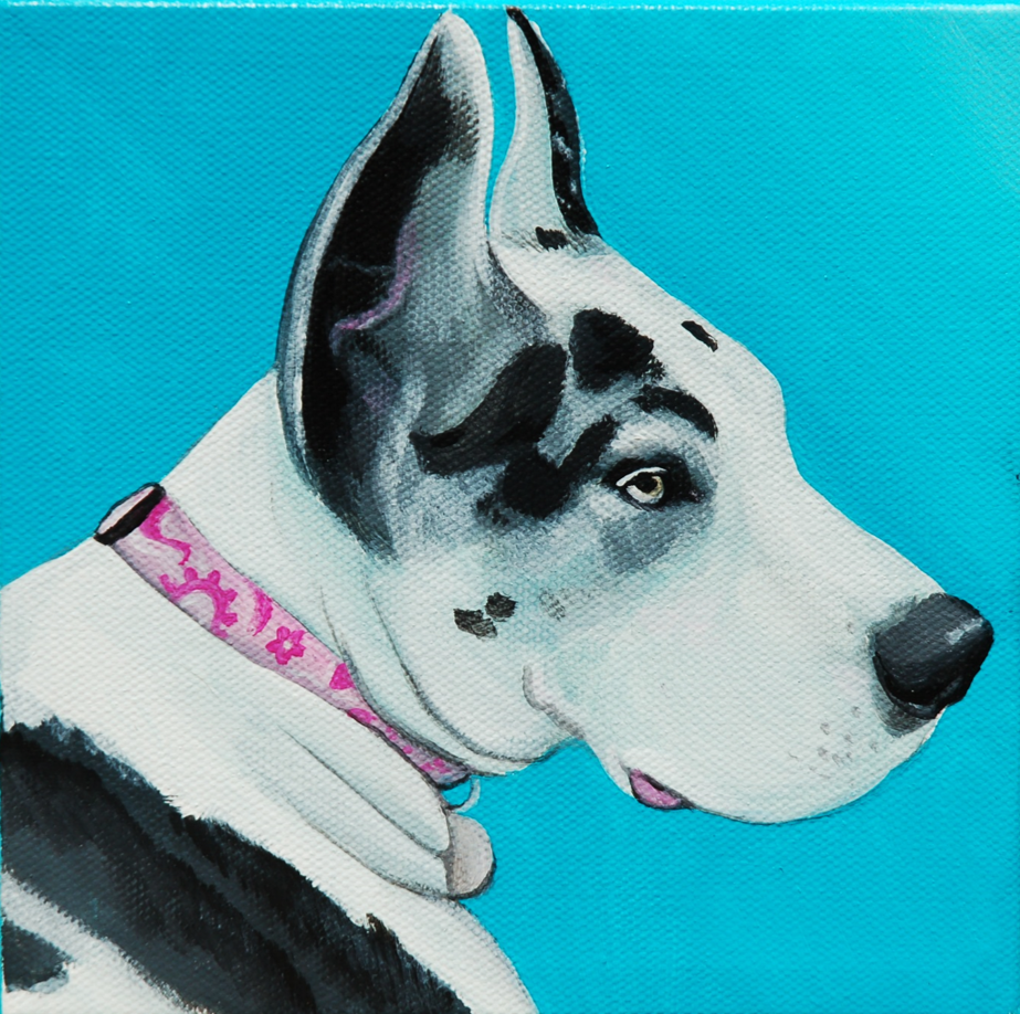 Great Dane black and white spots painting portrait.png