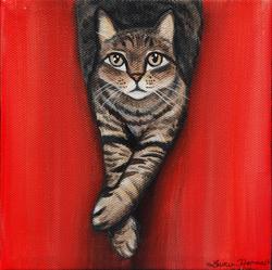 Cat legs crossed red background