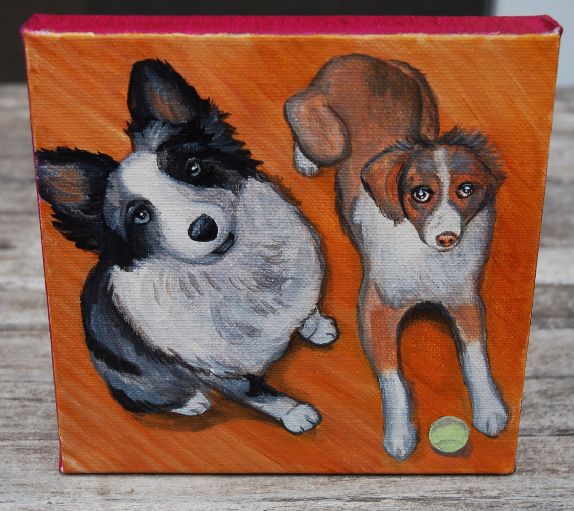 two australian shepherd painting.png