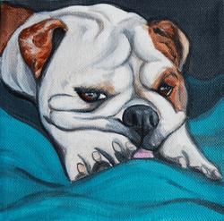 english bulldgo puppy painting.png
