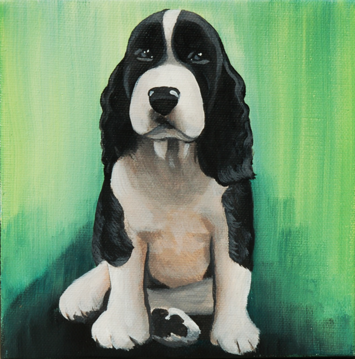 bernese mountain dog puppy painting.png