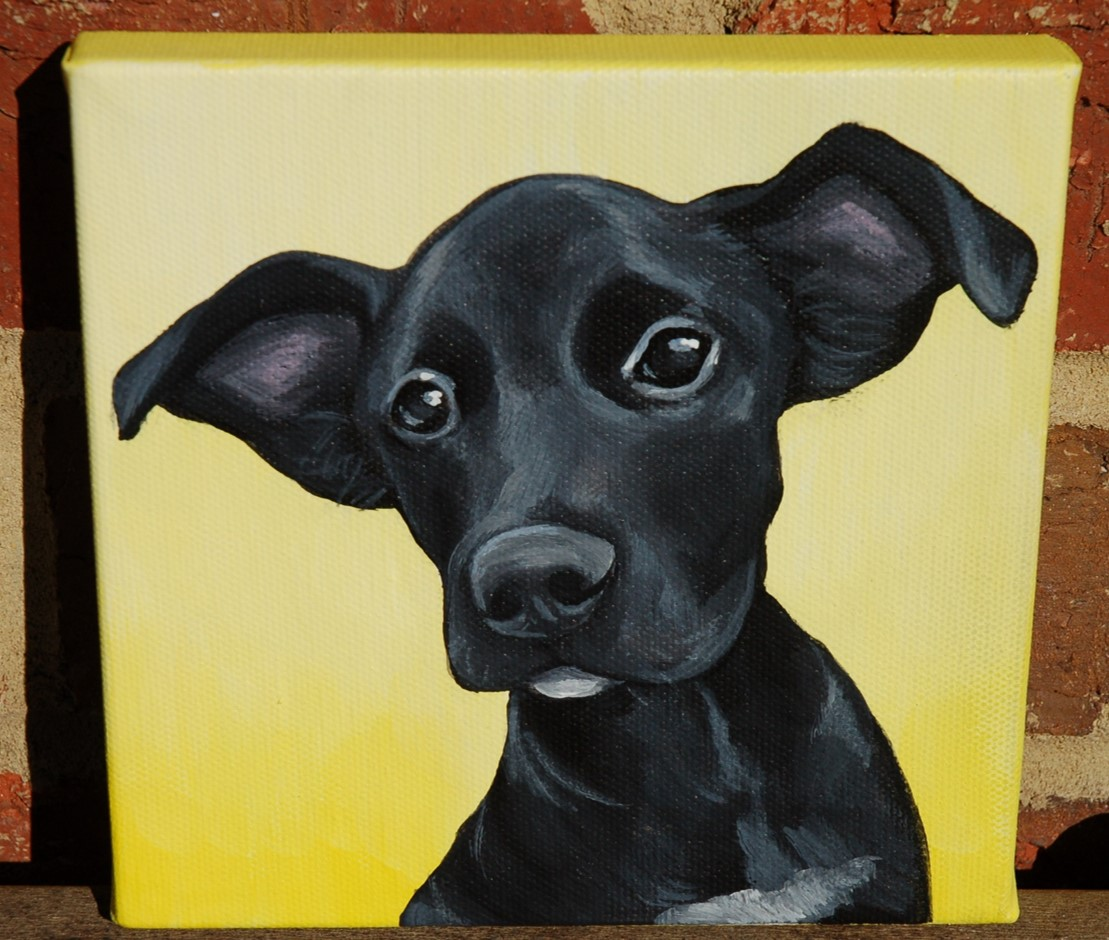 black puppy painting chihuahua.jpg