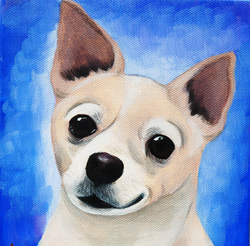 cute little chihuahua.png