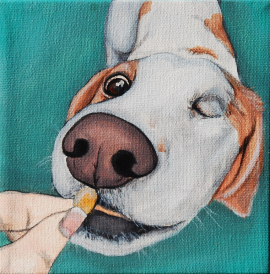 one eyed dog getting a treat painting.png
