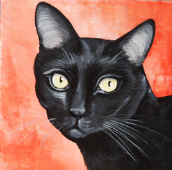 black cat red background on canvas.png