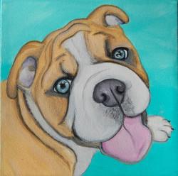 enligh bulldog portrait painting chewy.jpg