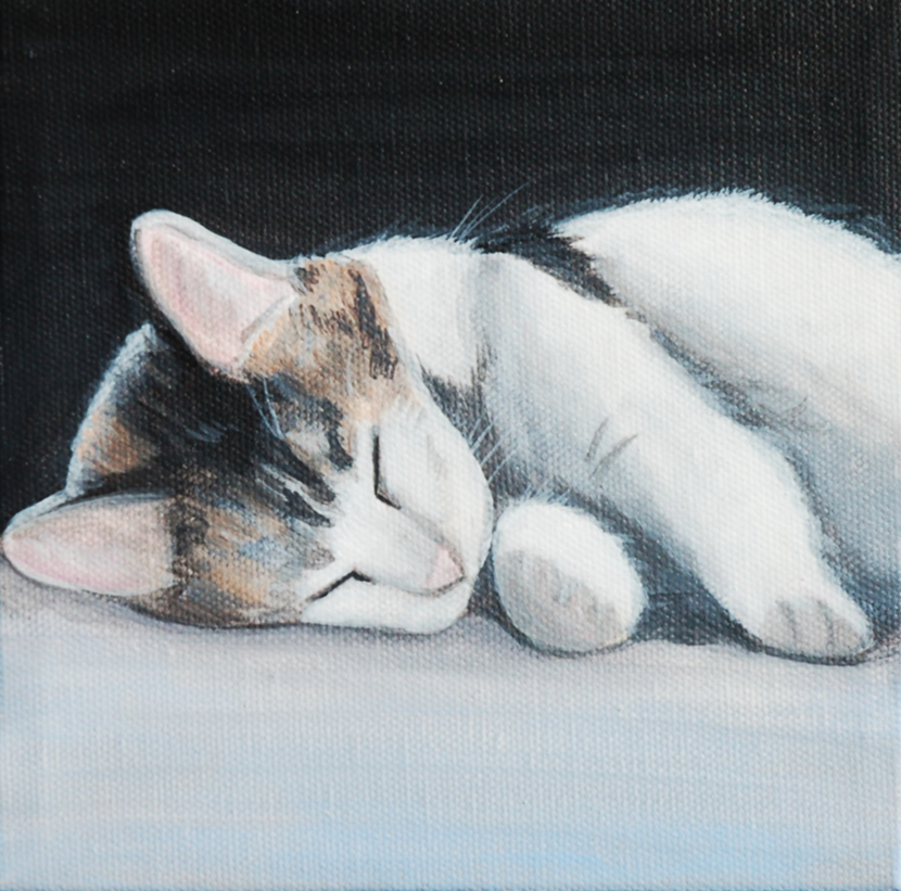 sleepy kitten painting