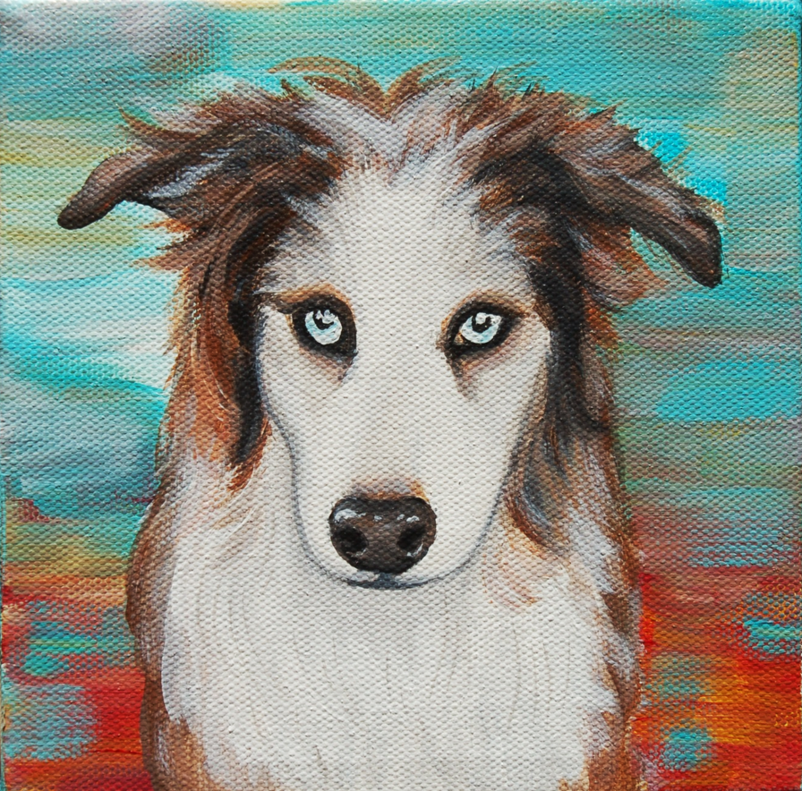 border collie austrailian shepherd painting 1.png