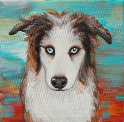 border collie austrailian shepherd painting 1.png