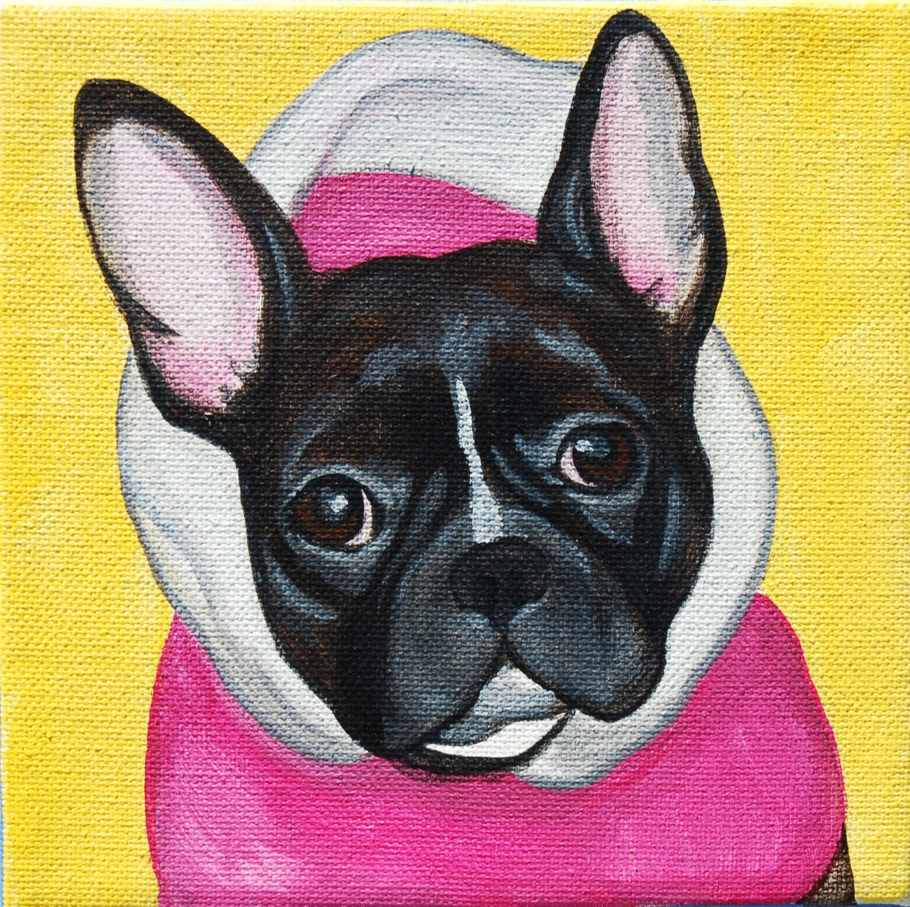 french bulldog waering pink hoodie yellow background.png