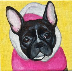 french bulldog waering pink hoodie yellow background.png