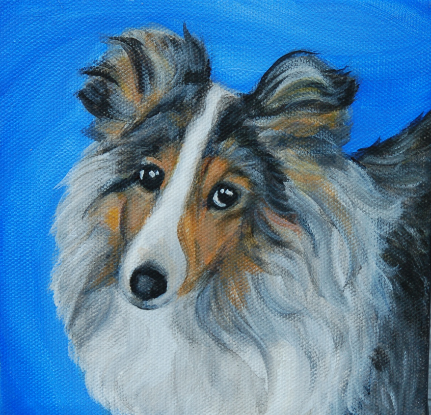 sheltie puppy painting.png