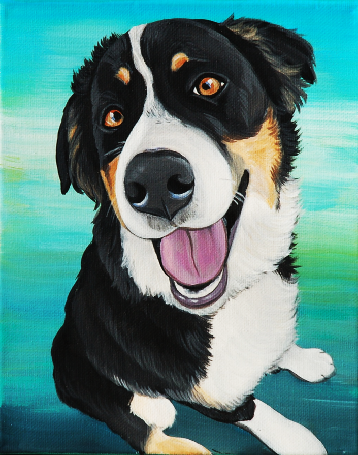 pet portrait burnese mountain dog