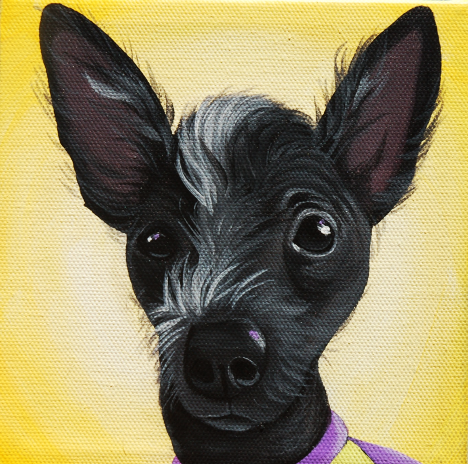 chinese crested painting portrait on canvas.png