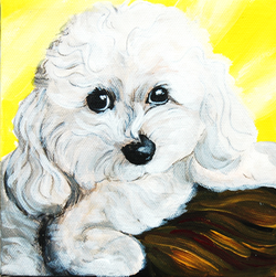 toy poodle painting.png