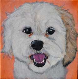 cute white fluffy dog painting.png