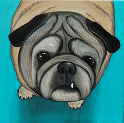 chubby pug painting.png