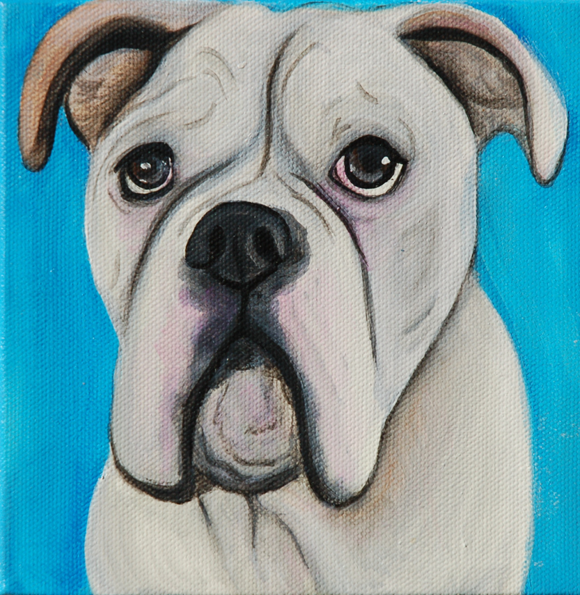american bulldog painting blue
