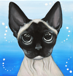 hAIRLESS CAT PORTRAIT.png